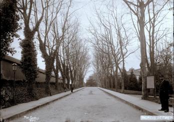 Avenida de Acesso aos Jardins do Palácio, em 1900