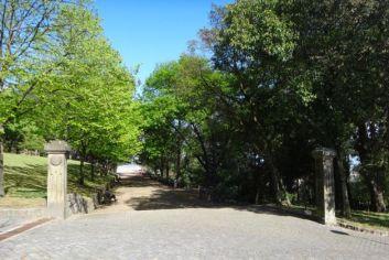 parque sao roque 1