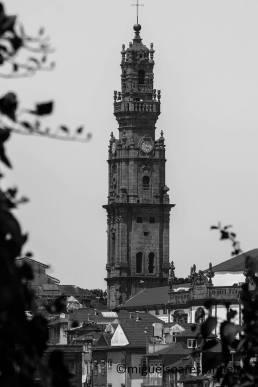 Fotografia de Miguel Pinheiro